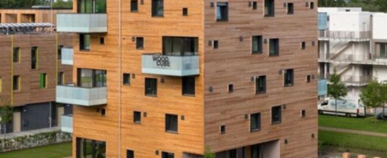 До трети социальных объектов в России могут начать строить из дерева